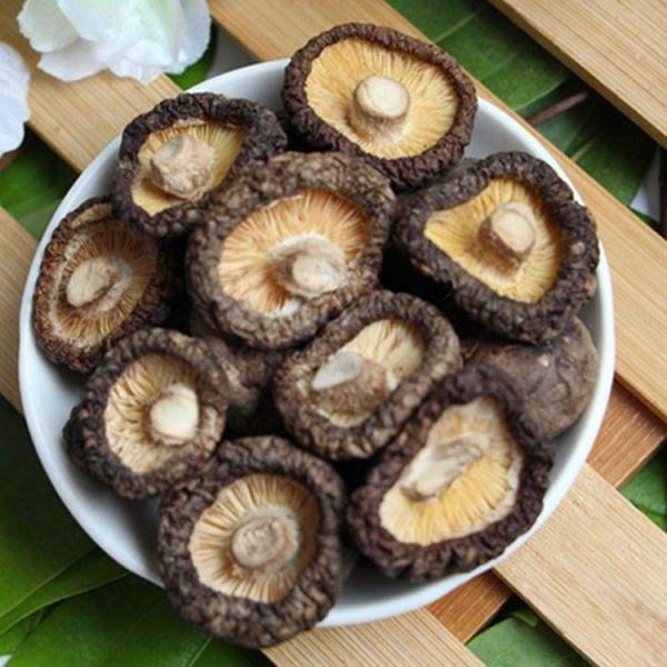 河南恒诺为食用菌香菇与农业生产脱水竞博jbo软件下载机烤箱用户提供方便